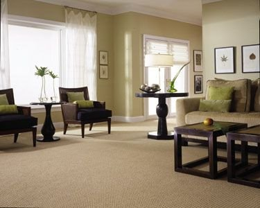 house carpet cleaners in south shields